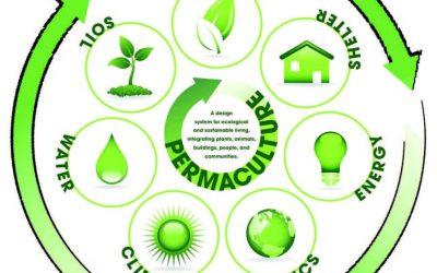 Pourquoi et comment faire son potager en permaculture?